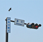 Kamakura01